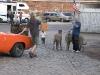 Saisoneroeffnung_2008-10046.jpg