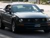 US-Car-Treffen_MD_2010-186